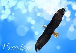 freedom-945300__180