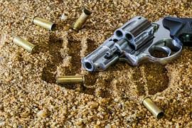firearm-409252__180
