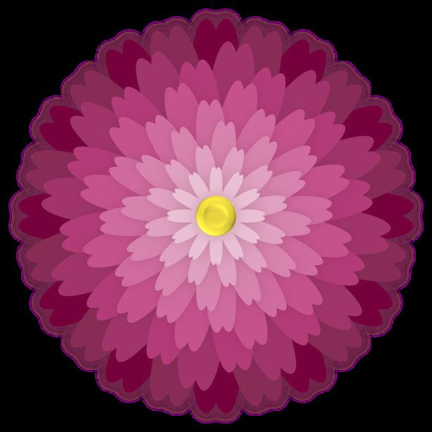 flower-3141511_1920